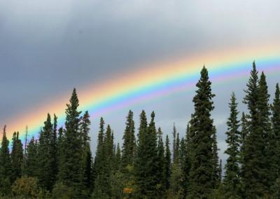 Gakona Alaska Guide