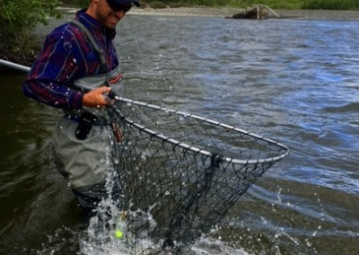 King Salmon, Gulkana River, Alaska Salmon Fishing