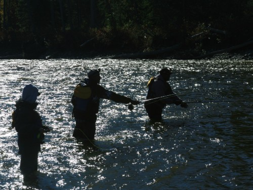 fly fishing, Gulkana River, Alaska, river, rafting, salmon fishing, Sockeye Salmon, Red Salmon,